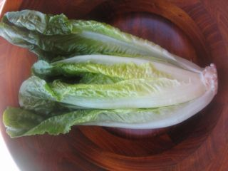 Heart of romaine