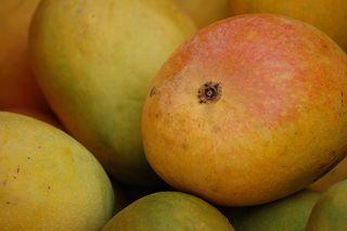 300px-Alphonso_mango