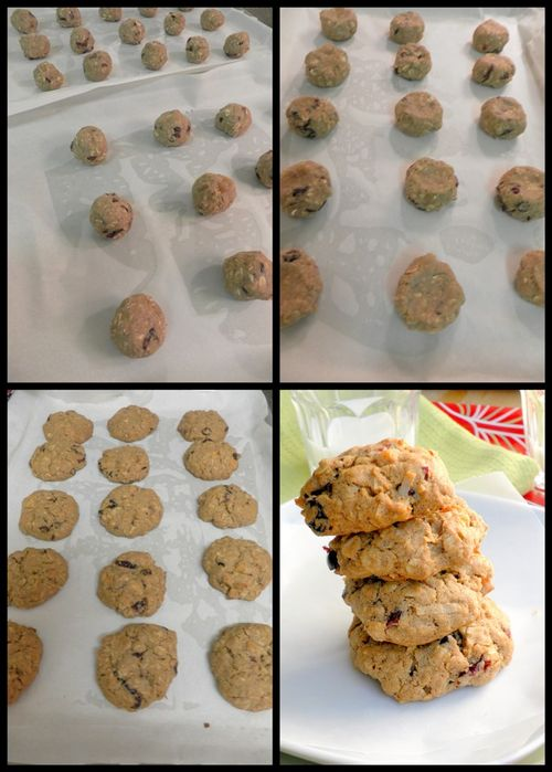 Chewy Oatmeal & Fruit Cookies collage