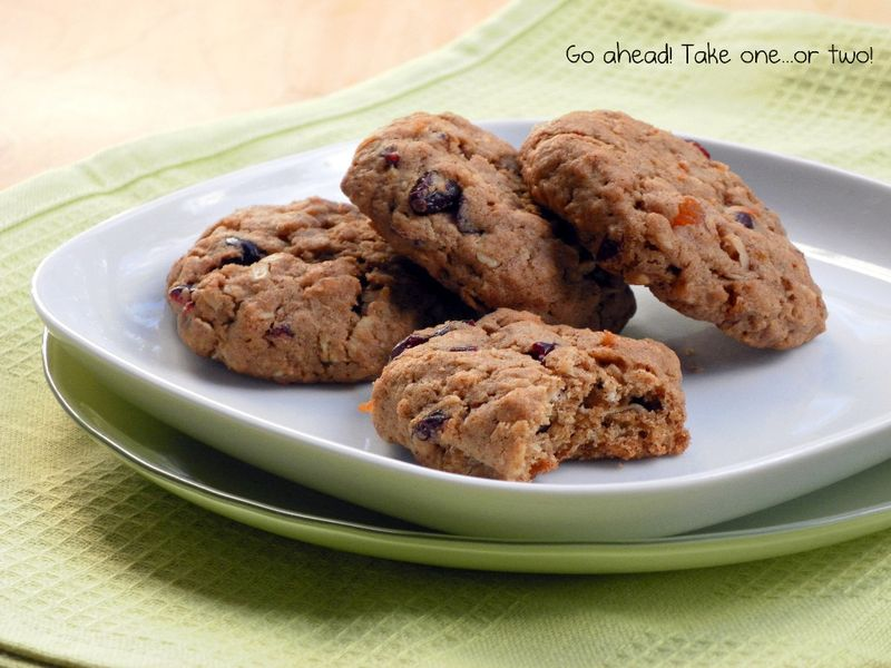 Chewy Oatmeal, Coconut & Fruit Cookies
