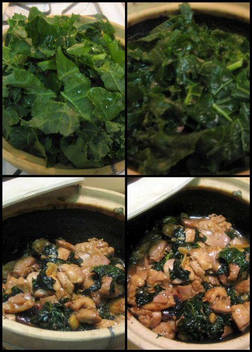 Asian chicken with kale-collage3