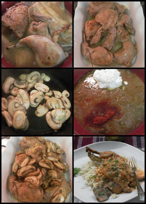 Rabbit chicken paprikash-collage3