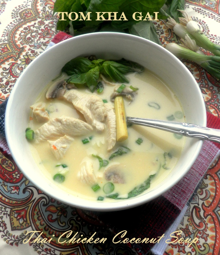 Thai chicken coconut soup-01