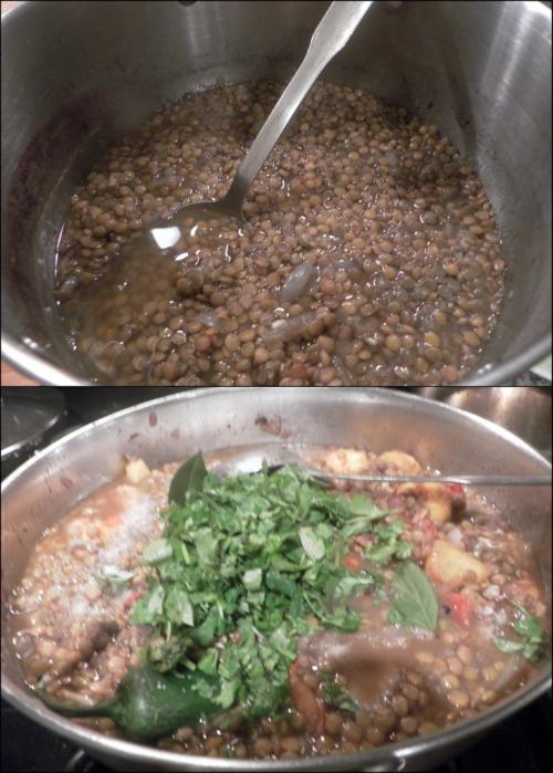 Mexican lentil soup4 (732x1024)