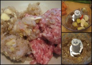 Vietnamese Spring rolls-collage1
