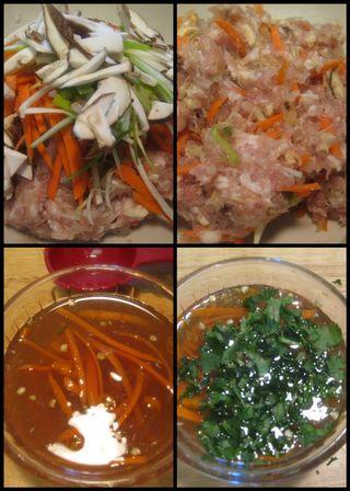 Vietnamese Spring rolls-collage4